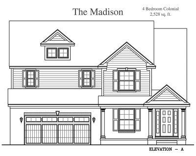 South Lyon MI Single Family Home For Sale: $359,900