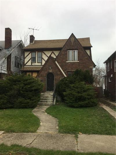 Detroit Single Family Home For Sale: 206 Chalmers Street