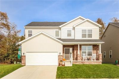 South Lyon MI Single Family Home For Sale: $329,000