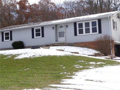 City Of The Vlg Of Clarkston, Clarkston, Independence, Independence Twp Single Family Home For Sale: 4651 Maybee Road
