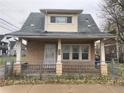 Hamtramck Single Family Home For Sale: 11705 Dyar