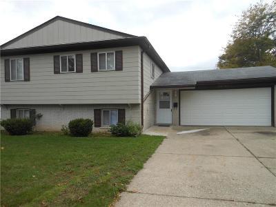 Farmington Hills Single Family Home For Sale: 29693 Moran Street