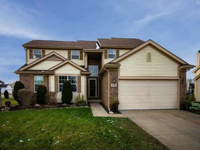 Hartland Twp Single Family Home For Sale: 2301 Lorraina Lane