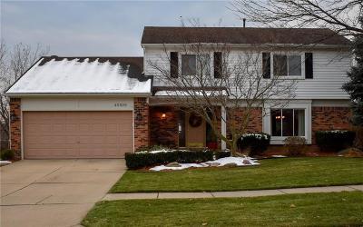 Novi Single Family Home For Sale: 45929 Crestview Drive