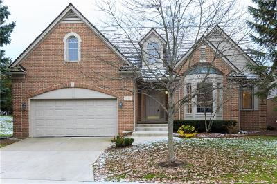 Bloomfield Twp Single Family Home For Sale: 1101 Park Place Court