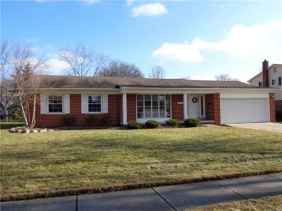 Livonia, Redford Twp, Farmington Hills, Farmington, Southfield Single Family Home For Sale: 17684 Woodside Street