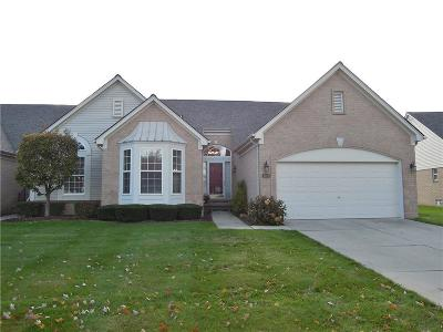 Sterling Heights Condo/Townhouse For Sale: 4166 Shorebrook