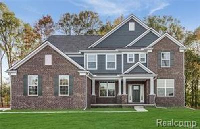 Lyon Twp Single Family Home For Sale: 56915 Rockway Court