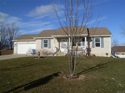 Swartz Creek Single Family Home For Sale: 9214 Jill Marie Lane