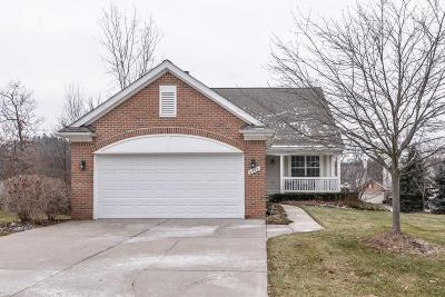 Clarkston, Independence Twp, Springfield Twp, Village Of Clarkston  Condo/Townhouse For Sale: 6598 Forest Ridge Court