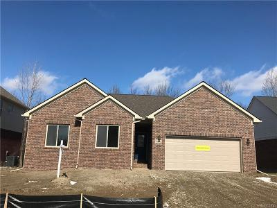 Clinton Twp Single Family Home For Sale: 20843 Oak Ridge