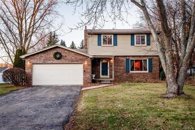 White Lake Single Family Home For Sale: 9032 Satelite Drive