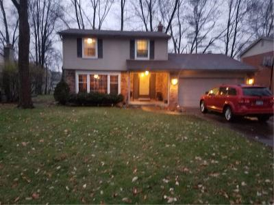 Southfield Single Family Home For Sale: 30009 Spring River Drive