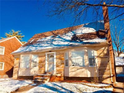 Detroit Single Family Home For Sale: 15812 Archdale Street