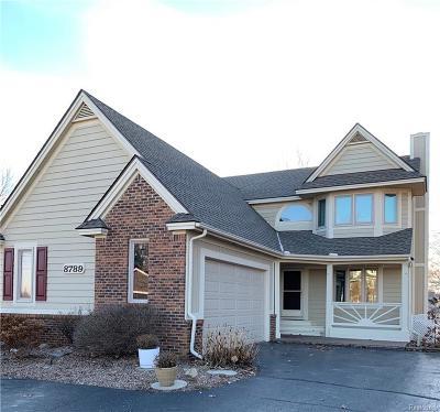White Lake Single Family Home For Sale: 8789 Arlington Street