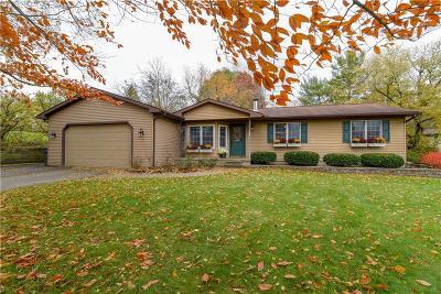 Green Oak Twp MI Single Family Home For Sale: $239,900