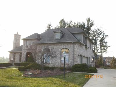 Canton Twp Single Family Home For Sale: 7253 Andover Drive