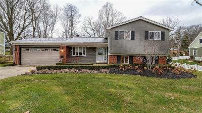 Northville Single Family Home For Sale: 869 Horton Street