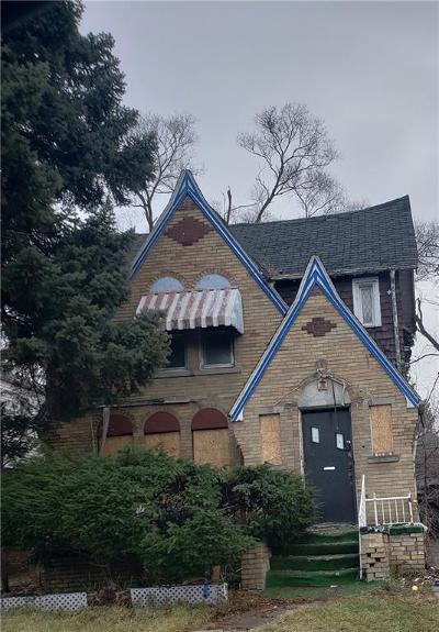 Detroit Single Family Home For Sale: 13156 Meyers Road
