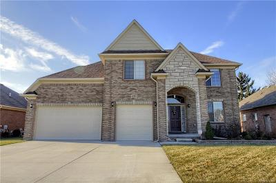 Macomb Twp Single Family Home For Sale: 45855 Andrew Drive