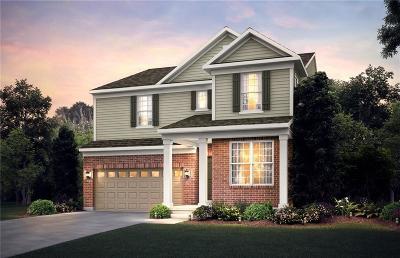 Ann Arbor Single Family Home For Sale: 2887 Dillon Drive