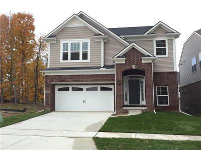 Ann Arbor Single Family Home For Sale: 2885 Dillon Drive
