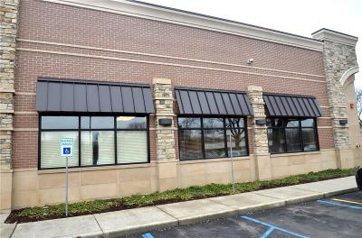 Livonia Commercial For Sale: 20278 Middlebelt Road