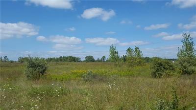 Washington Twp Residential Lots & Land For Sale: 31 Mile Rd