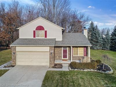 Waterford Twp Single Family Home For Sale: 432 Cove View Drive