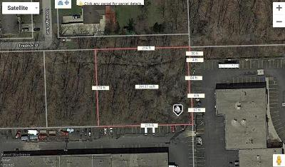Southfield Residential Lots & Land For Sale: Par 55 Fredrick
