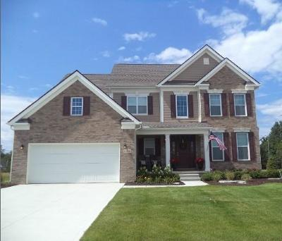 Canton, Canton Twp Single Family Home For Sale: 51138 Scarborough Road