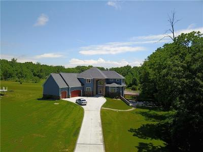 Lenawee County Single Family Home For Sale: 8414 Odowling