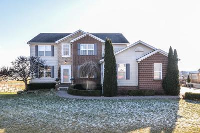 Hartland Twp Single Family Home For Sale: 8973 Bridlewood Trail