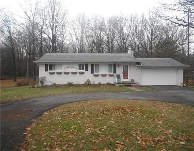 Huron Twp Single Family Home For Sale: 17904 Inkster Road