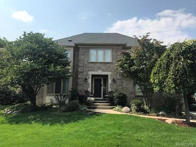 Farmington, Farmington Hills Single Family Home For Sale: 31045 Pine Cone Drive