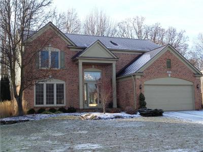 Lake Orion, Orion Twp, Orion Single Family Home For Sale: 3903 Long Meadow Lane