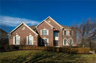Northville Twp Single Family Home For Sale: 46526 Crystal Downs W