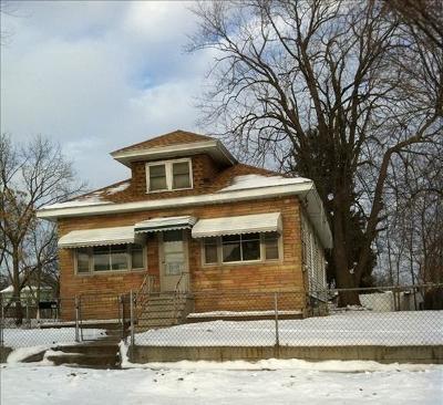 Pontiac Single Family Home For Sale: 117 Green Street