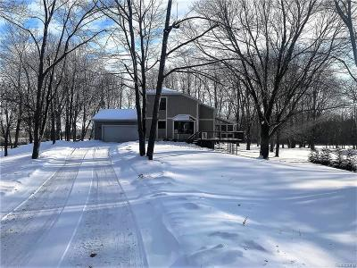 Single Family Home For Sale: 20155 Tipsico Lake Road