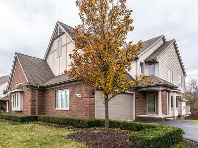 Highland Twp Condo/Townhouse For Sale: 1176 Alissa Marie Drive