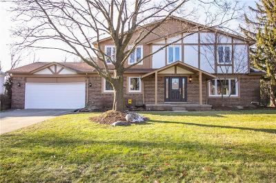 Bloomfield Twp Single Family Home For Sale: 5330 Hollow Drive