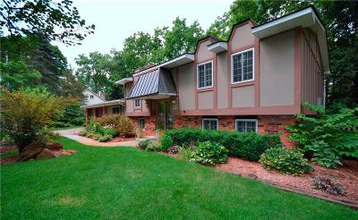 Orchard Lake Single Family Home For Sale: 3700 Arcadia Drive