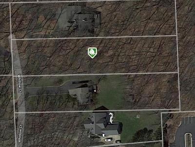 Commerce Twp Residential Lots & Land For Sale: Whitlow Court