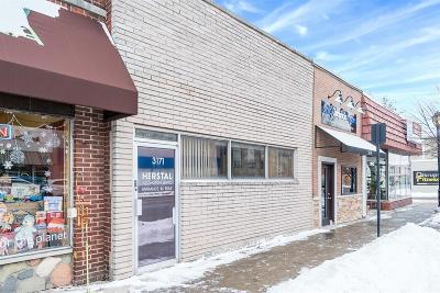 Berkley Commercial For Sale: 3171 12 Mile Road