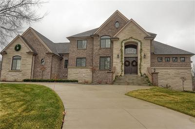 Rochester Single Family Home Contingent - Continue To Show: 950 Knob Creek Drive