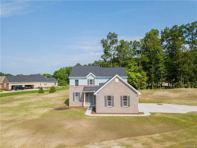 Lyon Twp Single Family Home For Sale: 4780 Morissey Lane