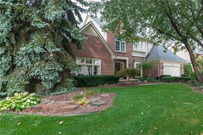 Novi MI Single Family Home For Sale: $492,900