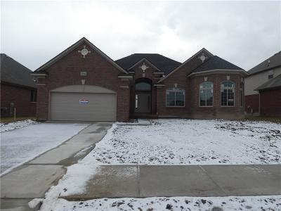 Macomb Twp Single Family Home For Sale: 21964 Rio Grande Drive