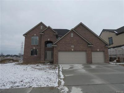 Macomb Twp Single Family Home For Sale: 22047 Rivanna Drive