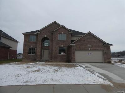 Macomb Twp Single Family Home For Sale: 22015 Rivanna Drive